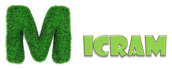 Logo de MICRAM