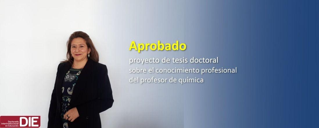 Banner por la aprobación del proyecto de Sandra Ximena Ibánez