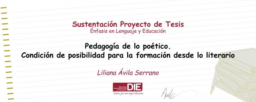 Banner por la Sustentación del Proyecto de Liliana Ávila
