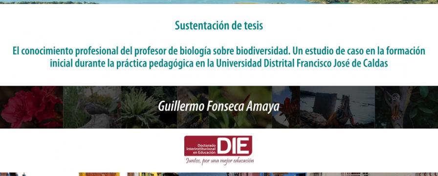 Banner por la sustentación de tesis de Guillermo Fonseca