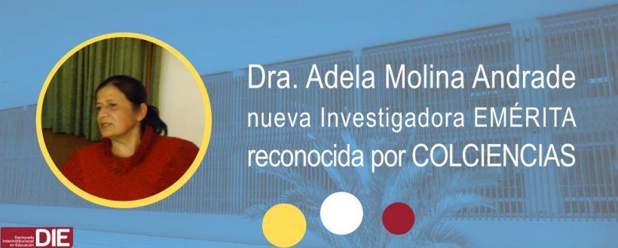 Banner por reconocimiento como investigadora emerita a Adela Molina